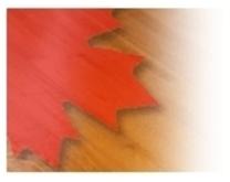 Canada Hardwood Flooring Inc. logo