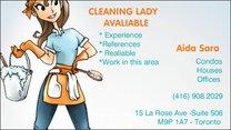 Aida Sara Cleaning Service logo