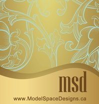 Model Space Designs logo